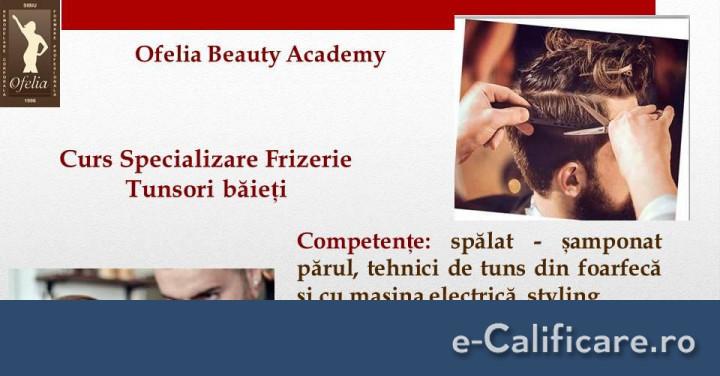 Curs Coafor Tunsori Baieti Frizerie Sibiu