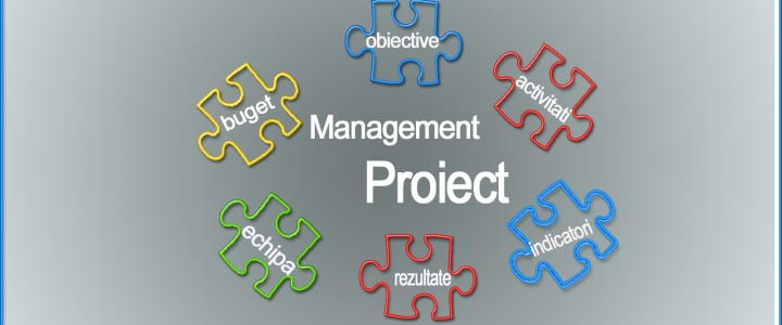 imagine Curs de perfectionare MANAGER PROIECT